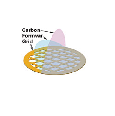 Formvar - Carbon Film