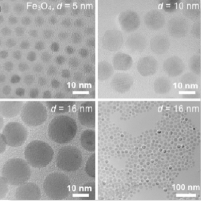 Hydrophobic (oleic acid) Iron oxide nanoparticles in heptane