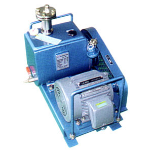 Oil Rotary Vane Pumps GRP-300