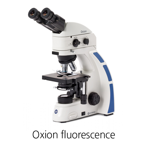 [Oxion fluorescence] LIFE SCIENCE Fluorescence microscopes 형광 현미경