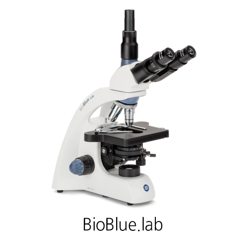 [BioBlue.lab] Life Science Phase contrast microscopes  위상차 현미경